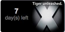 TigerTimer